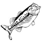 Stora Mounth Bass Illustration vektor illustrationer