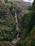 Stora nedgångar och djup kanjon med gröna växter Arkivfoton