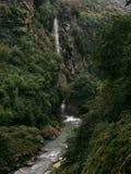 Stora nedgångar och djup kanjon med skogen Arkivbild