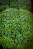 Stora och mogna broccoliflorets på trätabellen Arkivfoton