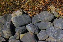Stora ovalstenar under en buske fotografering för bildbyråer