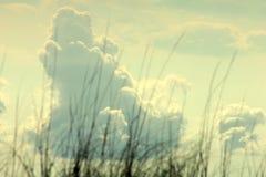 Stora pösiga moln över havsgräs arkivfoto