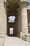 stora pelare Arkivbilder