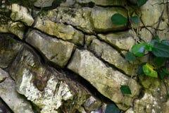 Stora pittoreska stenar Arkivfoton