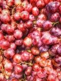 Stora röda druvor royaltyfri fotografi