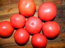 Stora röda nya saftiga tomater läggas ut i form av en blomma Royaltyfri Fotografi
