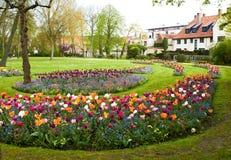 Stora rabatter mycket av färgglade blommor med hus på bakgrund Arkivfoton