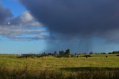 Stora regniga moln i ett faraway royaltyfri fotografi