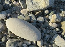 Stora runda stenamongspebbels arkivbild