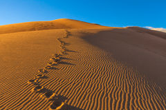 Stora sanddyn royaltyfria bilder
