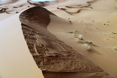 Stora sanddyn, Sahara Merzouga, Marocko Royaltyfria Bilder