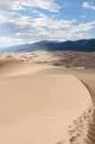 Stora Sanddyner -- Verticle Arkivbilder