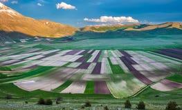 Stora sceniska fält för piano och Sibillini berg i Umbria, det Arkivfoto
