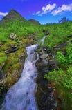 Stora sjofaletes national park. River running through valley in stora national park in sweden Royalty Free Stock Photo