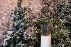 Stora stearinljus i glass vaser near gran-trädet med ficklampor i ett s Arkivbilder