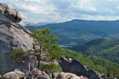 Stenar i bergen Fotografering för Bildbyråer