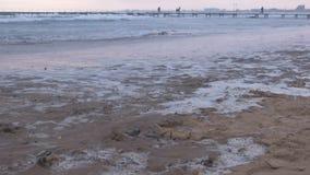 Stora stormiga vågor i havet Härlig seascape med pir, den sandiga stranden och kuststaden på bakgrund på solnedgången stock video