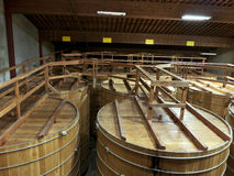 Stora trummor i winekällare Arkivbilder