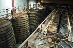 Stora trummor i winekällare Royaltyfria Foton
