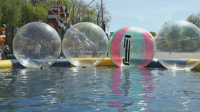 Stora uppblåsbarbollar som svävar i simbassäng stock video