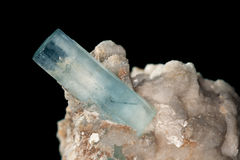 Stora väl bildade Aquamarinekristaller på matris vaggar Arkivbild
