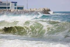 Stora vågor i Sochi Arkivfoto