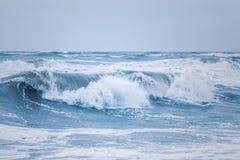 Stora vågor på den danska Nordsjökusten royaltyfria bilder