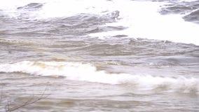 Stora vågor på floden arkivfilmer