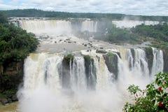 Stora vattenfall i djungelskog Arkivbilder