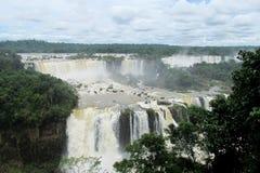 Stora vattenfall Iguassu i djungelskog Royaltyfri Fotografi
