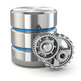 Storage administration concept. Database symbol and gears. Royalty Free Stock Photography