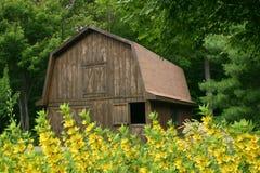 Storage Barn. A backyard storage barn Royalty Free Stock Image