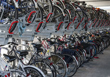 Storage of bikes and bicycle shed Stock Photo