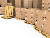 Storage. Cardboard boxes on pallet. Stock Photography