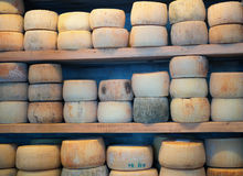 Storage of cheese products. Stock Photography