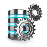 Storage database and gears on white background Stock Photos