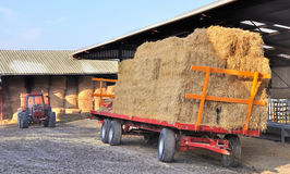 Storage of fodder in a stable Royalty Free Stock Photography