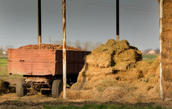Storage of hay bales Royalty Free Stock Images