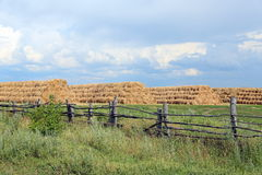 Storage of hay open-air Stock Photos