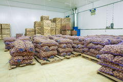 Storage house potato in bags and crates Royalty Free Stock Image