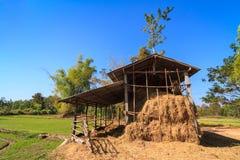 Storage of rice straw Royalty Free Stock Photo