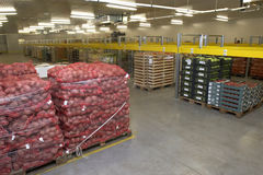 Storage room. Interior of storage of  fruit and vegetable packages Stock Images