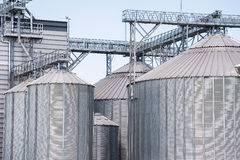 Storage silos for agricultural (cereal) products. Agricultural Silo - Building Exterior, Storage and drying of grains, wheat, corn, soy Royalty Free Stock Photo