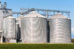 Storage silos for agricultural (cereal) products. Agricultural Silo - Building Exterior, Storage and drying of grains, wheat, corn, soy Stock Photography