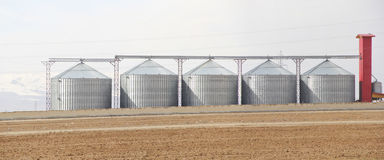 Storage silos Royalty Free Stock Photo