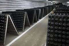The storage of sparkling wine in a wine cellar. Stock Images