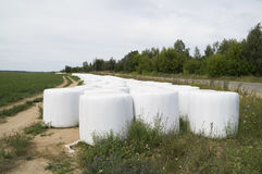 Storage of straw bales in plastic film Stock Images