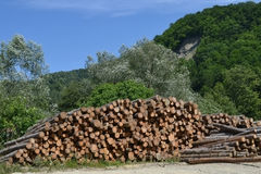 Storage timber Royalty Free Stock Photography