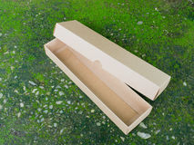 Storage Tray and Lid Box on Green moss Royalty Free Stock Image
