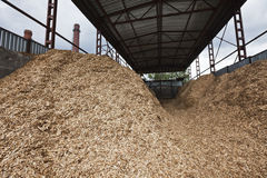 Storage of wood chips Royalty Free Stock Image